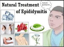 Epididymitis-Natural-Treatment