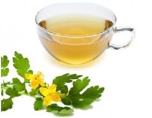 Celandine Tea